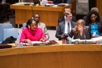 Security Council Meetiong, The Situation in CAR