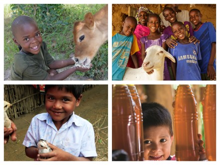 Heifer International Gifts