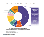 Causes for Child Mortality