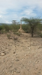 There are plenty of termite houses in Turkana. Because of sandflies, a neglected tropical disease -kala azar is common in this area.