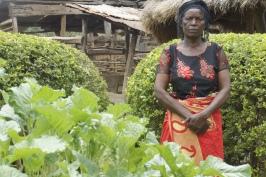 Organic farmer in Zambia